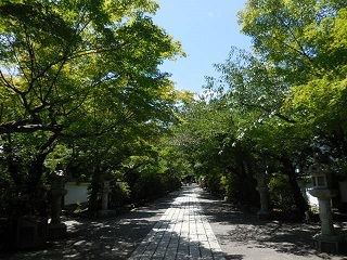 2018kyoto_36.jpg