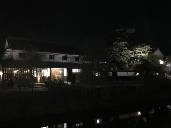 37_鶴形と松
