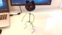 骨組みの黒猫さん