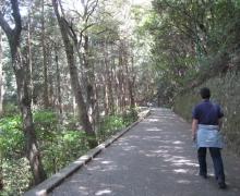 呉宮島岩国-128