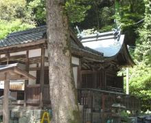 呉宮島岩国-142