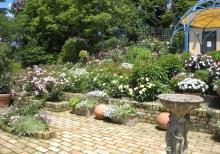 ガーデン比叡と延暦寺ー8