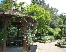 ガーデン比叡と延暦寺ー10