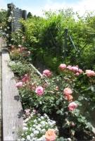ガーデン比叡と延暦寺ー14