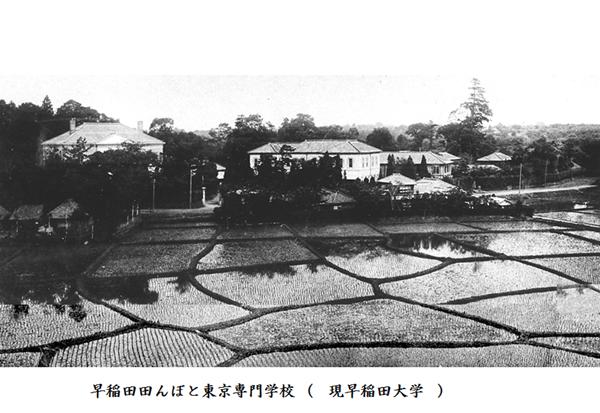 早稲田田圃と学校
