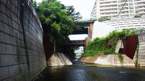 「神田川親水テラス」から上流を望む