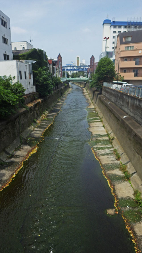 清水川橋から田島橋を望む