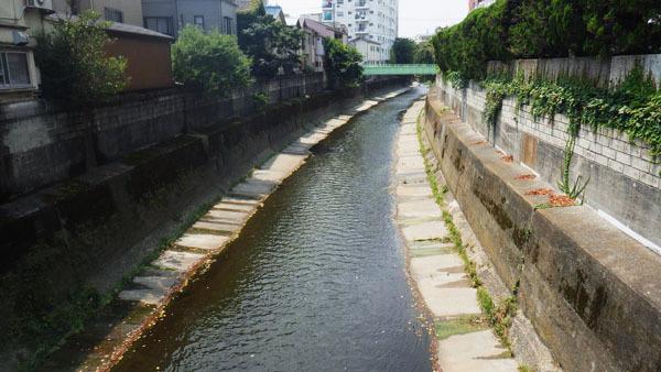 宮田橋から落合橋を望む
