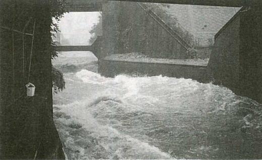 1993年(平成5)の洪水時における「高田馬場峡谷」
