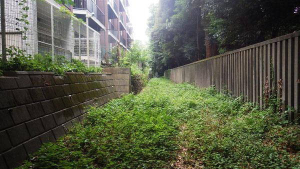 旧渋谷川水路