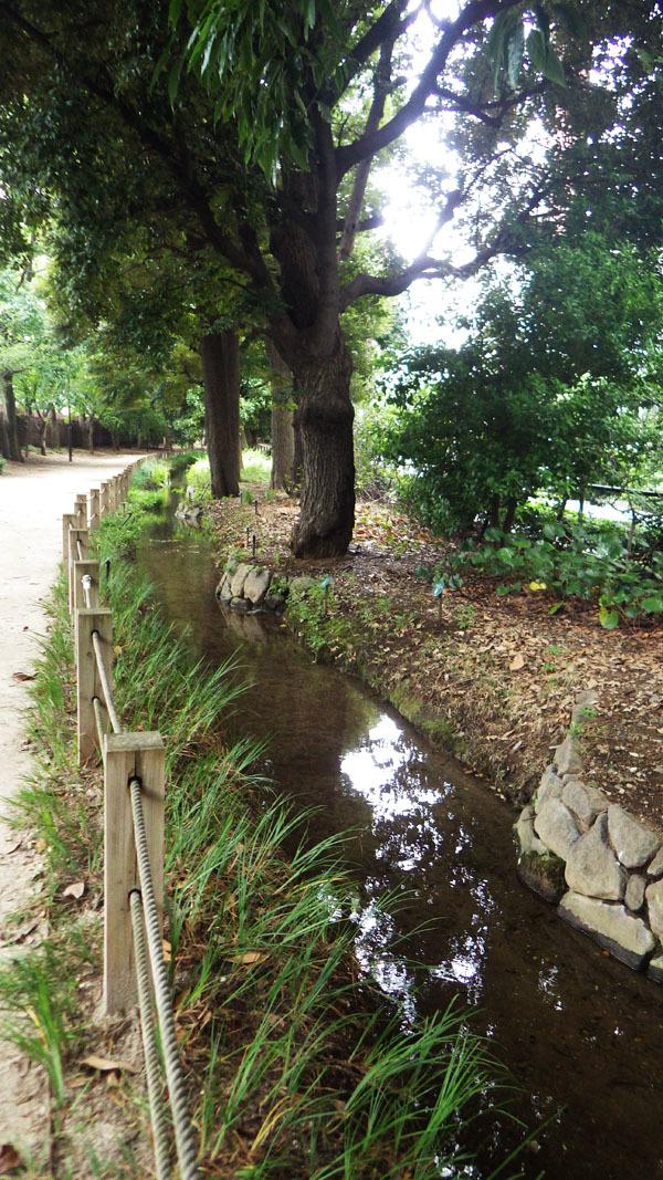 内藤新宿分水散歩道