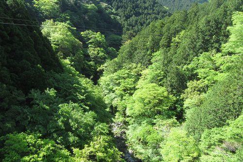 境橋から見下ろす多摩川