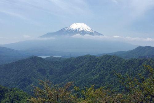 菰釣山からみた富士山