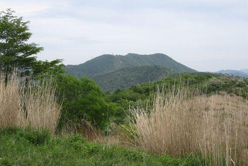 大平山より望む石割山
