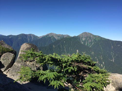カラマツと白峰三山