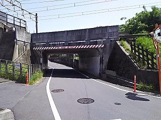 hyakuiri3.jpg
