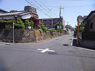 hyakuiri4.jpg
