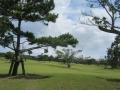2018.6.5沖縄6