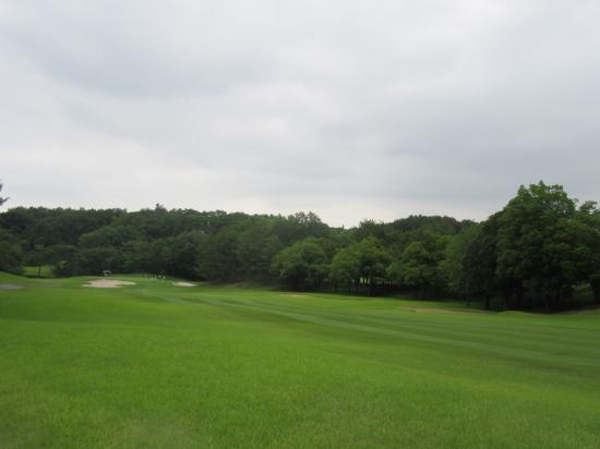 2018.6.12埼玉5