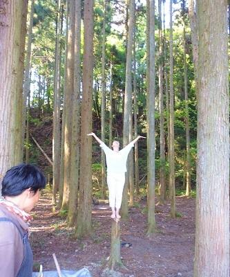 ぽ 1日目 木の精