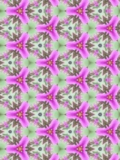 180712_161642_ed.jpg