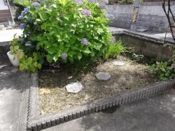花壇の草取り20180711