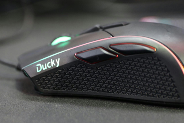 Ducky_Secret2_08.jpg