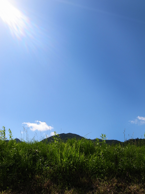 oohara_18_6_1_3.jpg