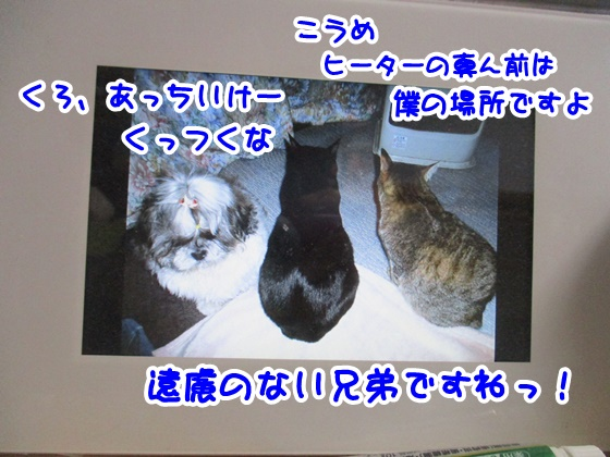0414-04_201804141657596a1.jpg