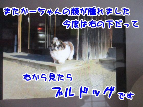 0526-06_20180526144330ae0.jpg