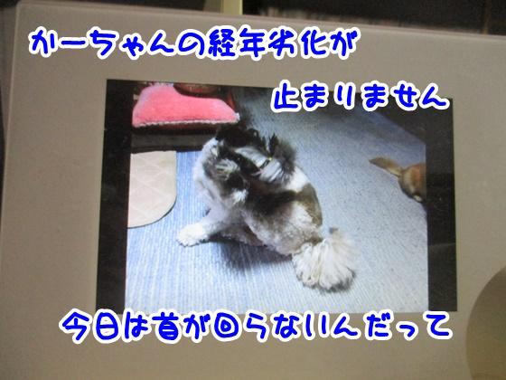 0603-01_201806032018598eb.jpg