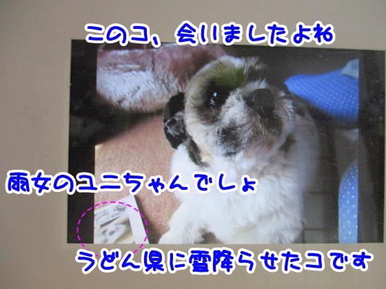 0620-05_201806201336133c1.jpg