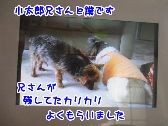 0630-01_20180630154408fac.jpg