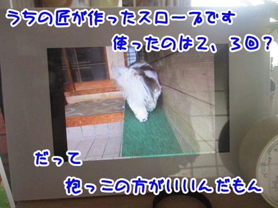 0709-01_20180709141628f77.jpg