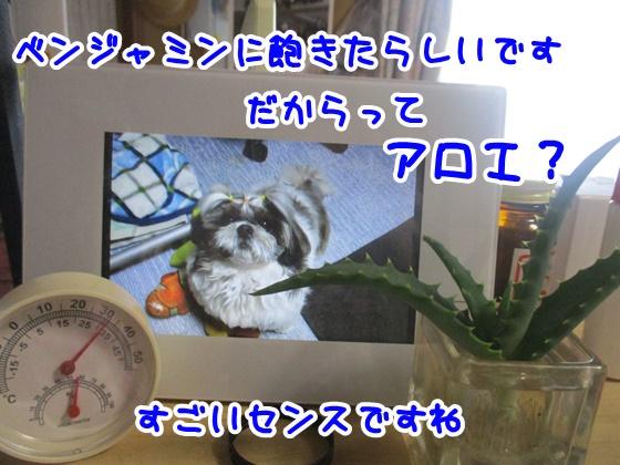 0720-05_20180720135701618.jpg