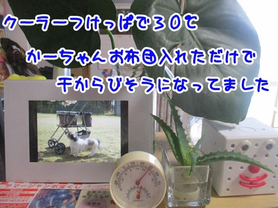 0802-09_20180802145016d72.jpg