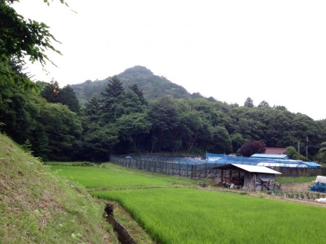 笠間城遠景。