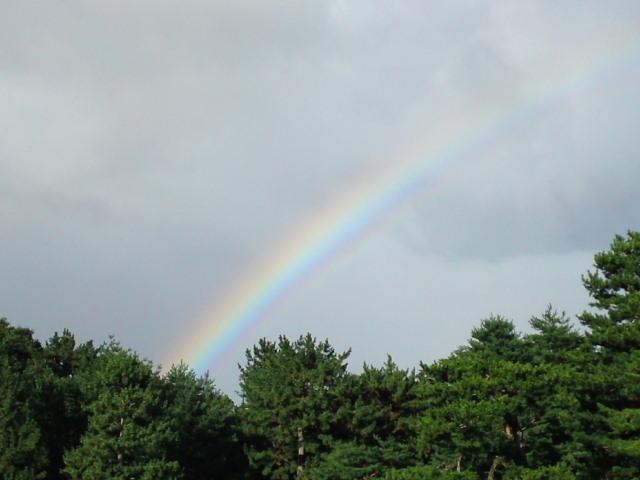 180729御所さんぽ⑥台風のあとの虹