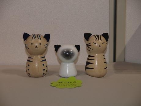P6220027 猫