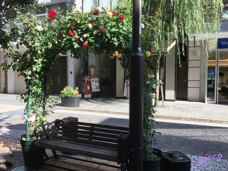 元町のお花