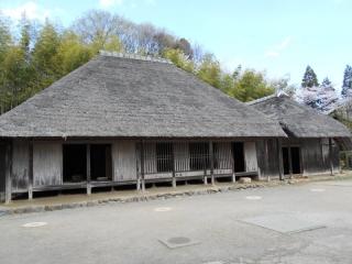 生田緑地_004