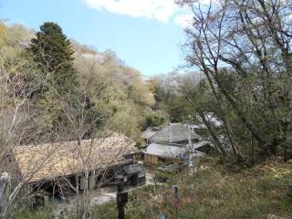 生田緑地_005