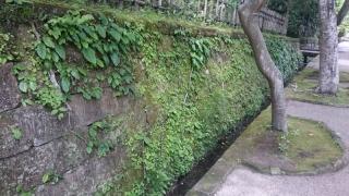 新緑の鎌倉07