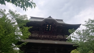 新緑の鎌倉16