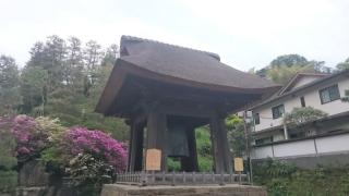 新緑の鎌倉18