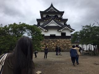 城巡り_012彦根城正面