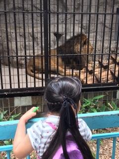 動物園_001