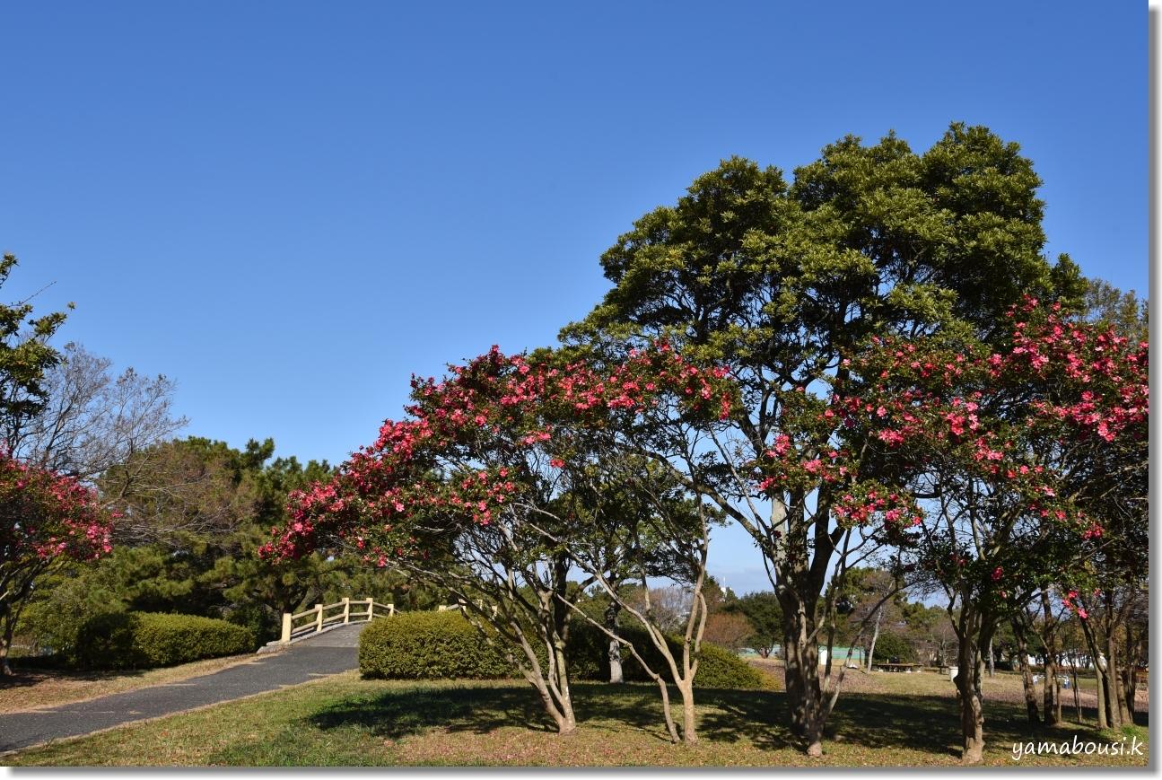 ひょうたん島公園 DSC_1212