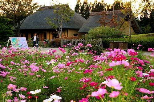 Traditional_houses_in_michinoku_park.jpg