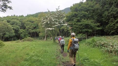 6月ゆうゆう山歩クラブ例会 050